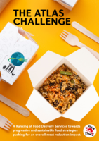 The Atlas Challenge Delivery Services Report