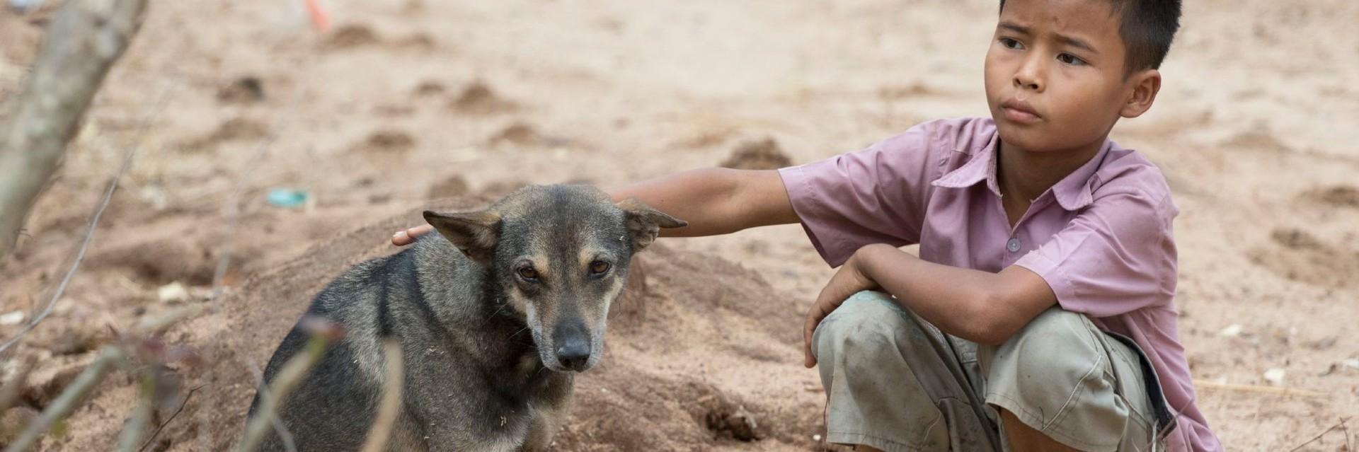 Un enfant de Myanmar avec son chien