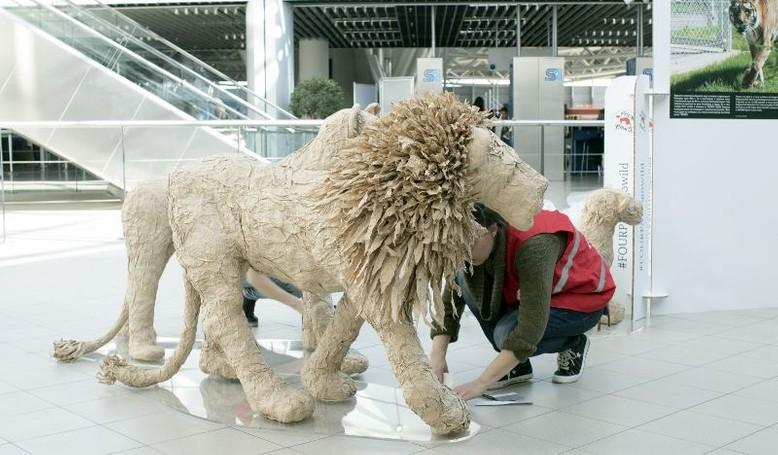 lions-from-paper-woman-ducking-airport