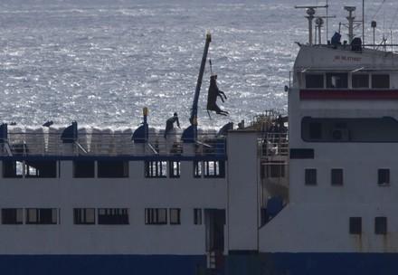 Transportschiff vor Cartagena