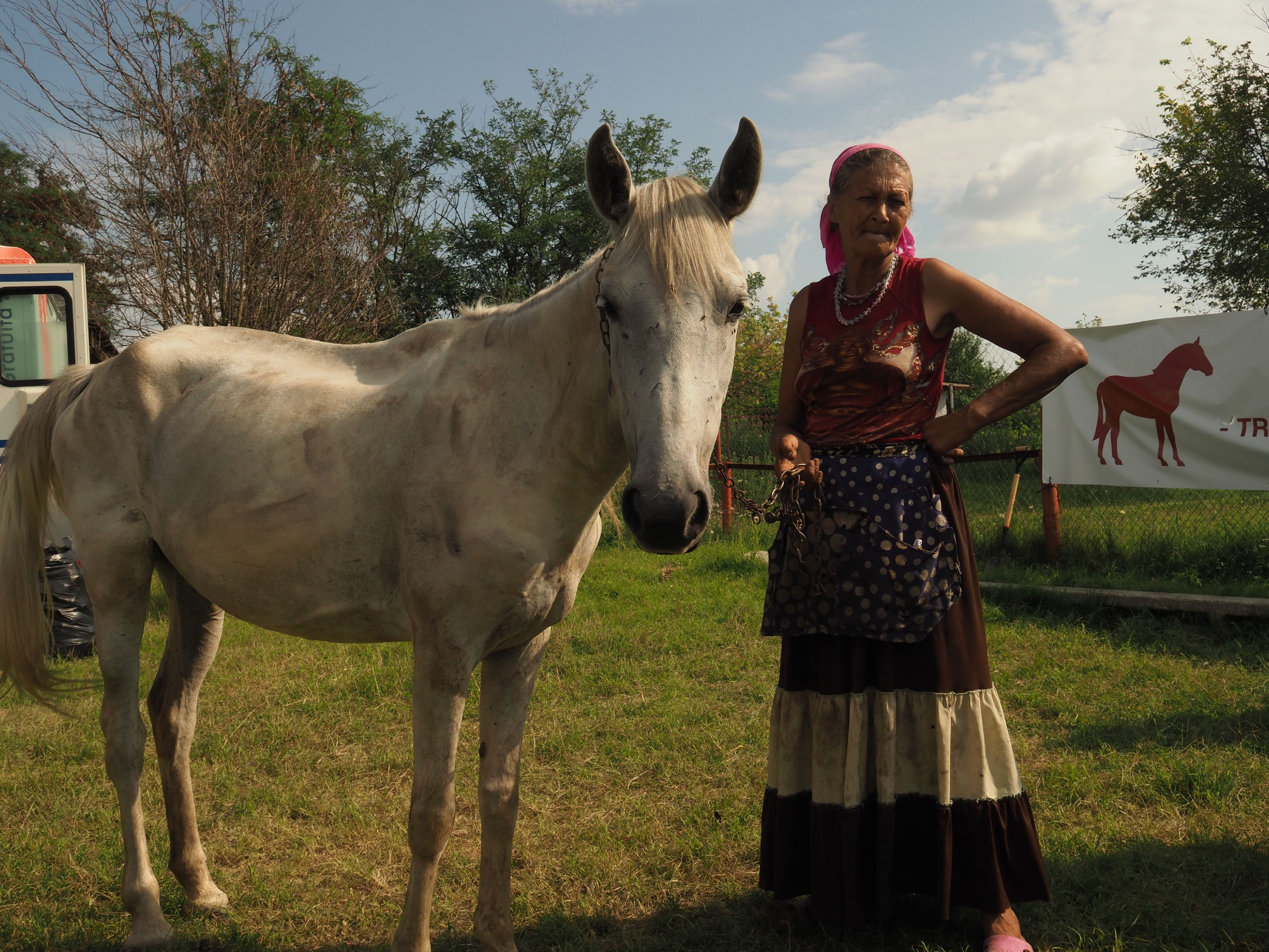 Arbeitspferde der Roma (c) VIER PFOTEN | ARCA | Kuki Barbuceanu
