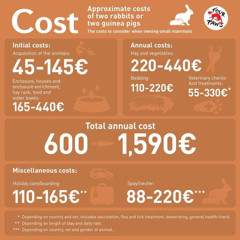 Approximate costs of two rabbits or two guinea pigs