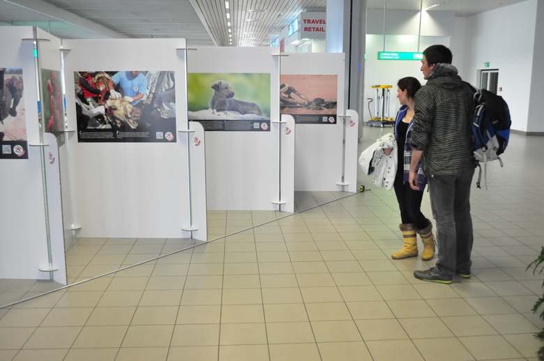airport-photo-exhibition-people