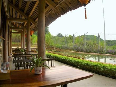 BEAR SANCTUARY Ninh Binh