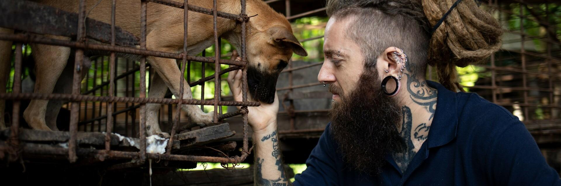 VIER VOETERS medewerker met hond in een kooi