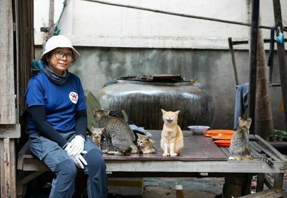 Feeding Programme Cambodia 2020