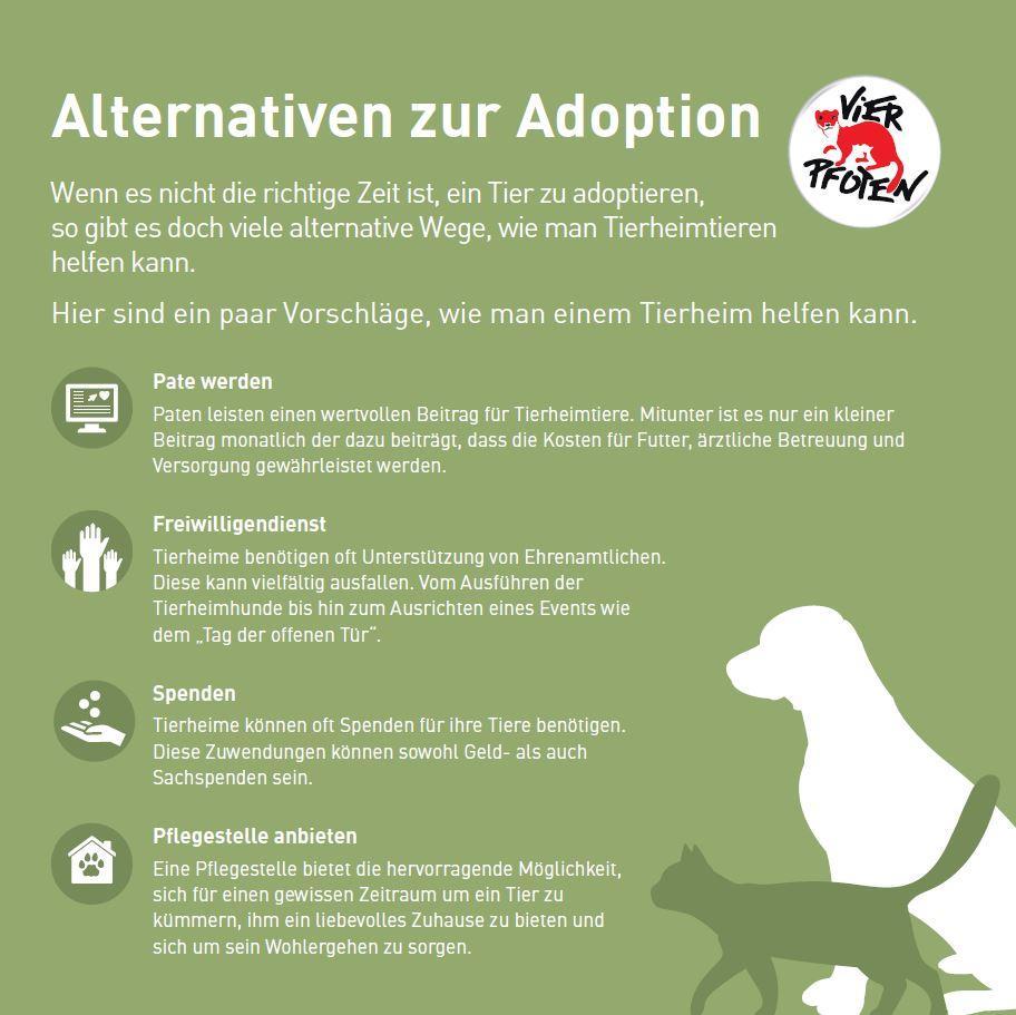 Alternativen zur Adoption