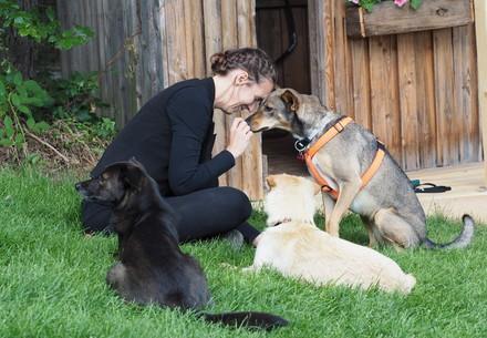 Frau mit drei Hunden in der BÄRENWALD Hundezone
