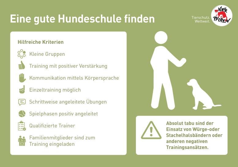 Infografik gute Hundeschule finden