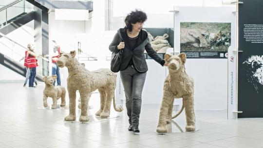 woman-airport-lion-from-paper-people-in-background