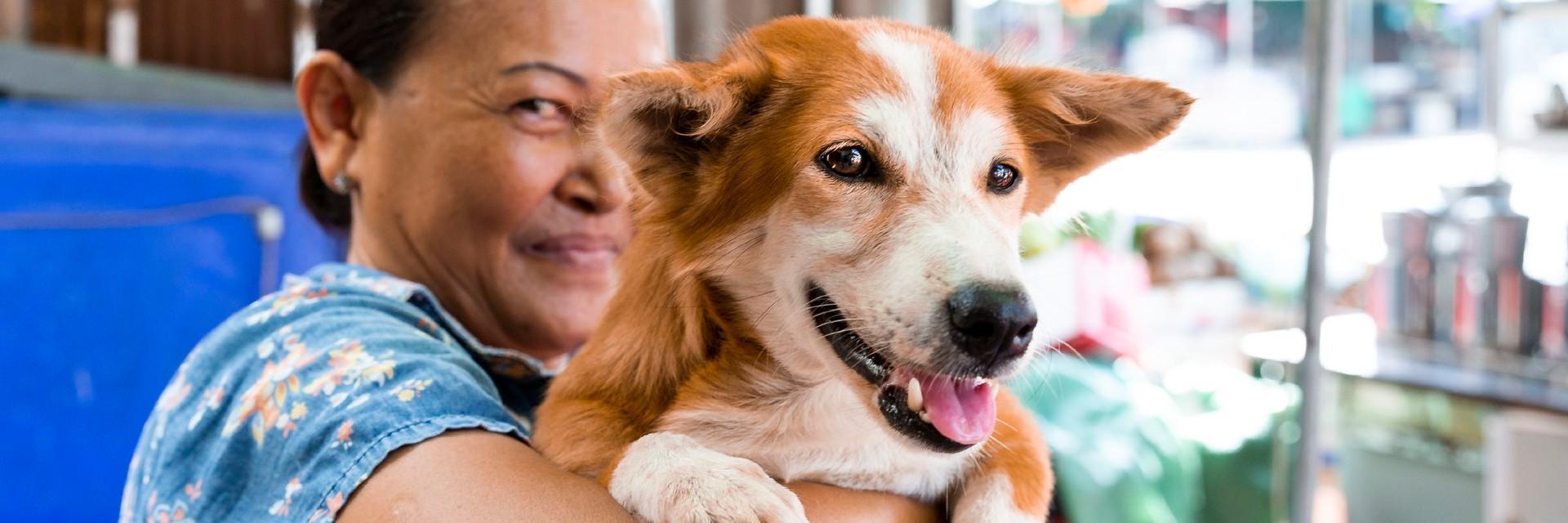 Koop een eerste kado voor een geredde hond of kat