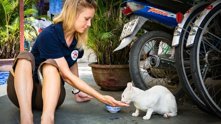 Koop voer voor een geredde kat