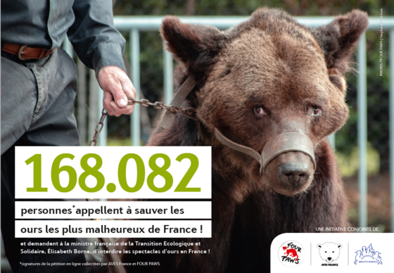 168,092 people have spoken out in favour of banning bear shows in France