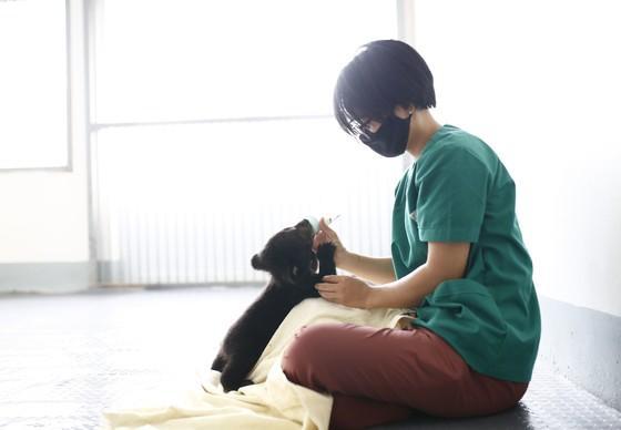 Mochi wird von einer Pflegerin versorgt