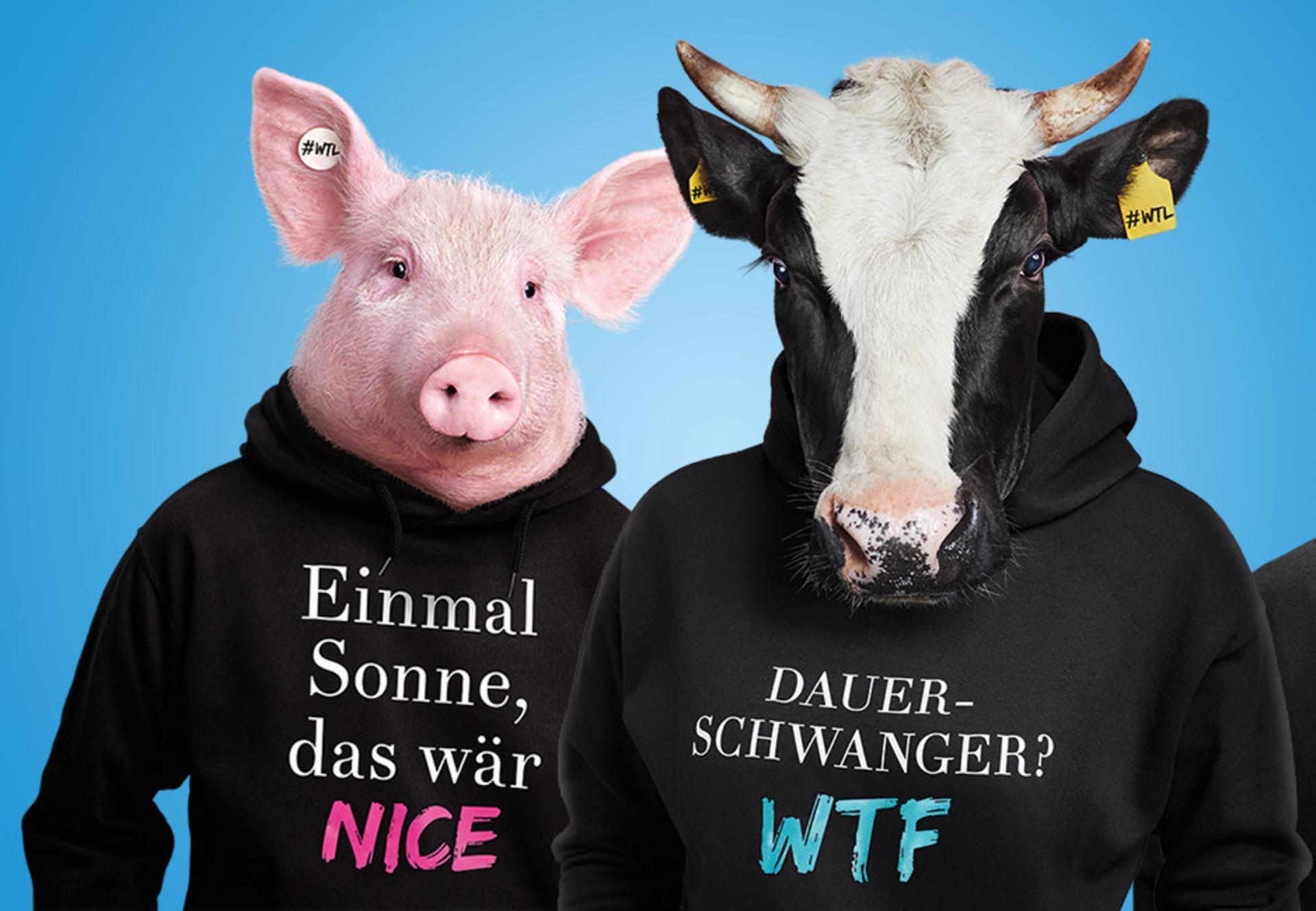 What the Lunch Visual mit Kuh und Schwein