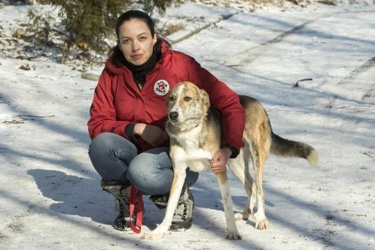 dog-woman-red-jacket-snow