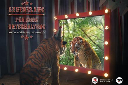 Visual keine Wildtiere im Zirkus
