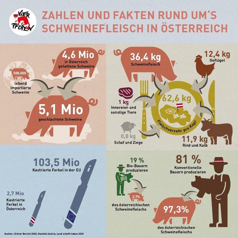 Schweinefleich in Österreich (c) VIER PFOTEN