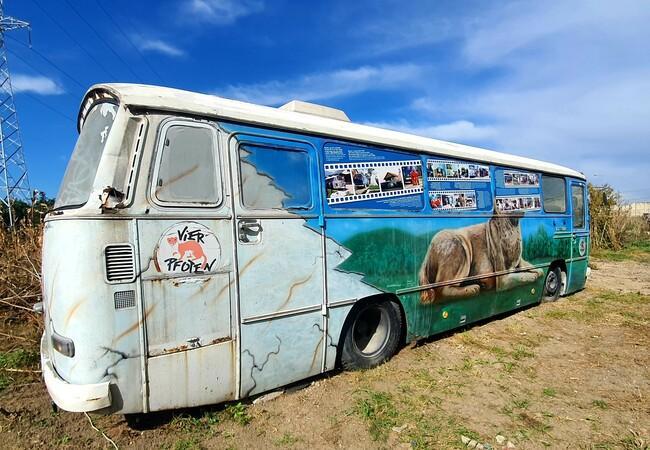 l'ancienne clinique pour animaux errants deviendra un musée accessible au public