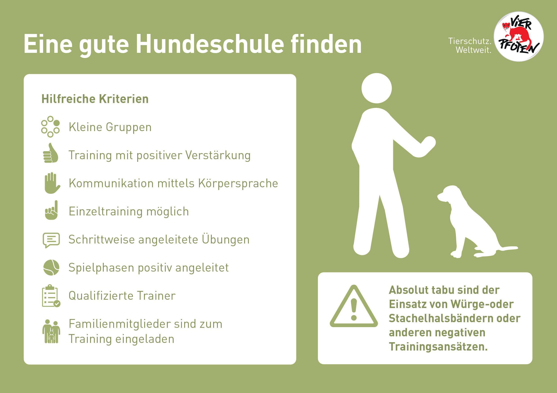 Infografik: Eine gute Hundeschule finden