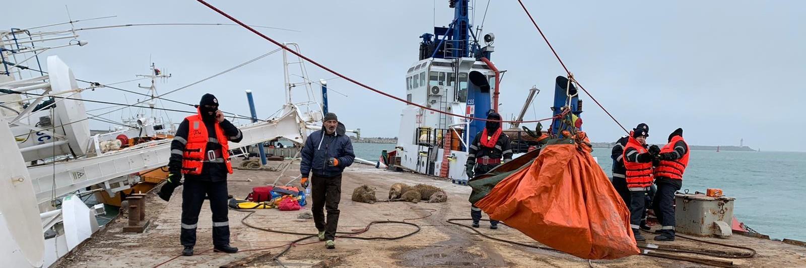 Rescue team at capsized