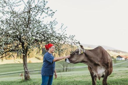 Milchkuh und Bäuerin auf der Weide