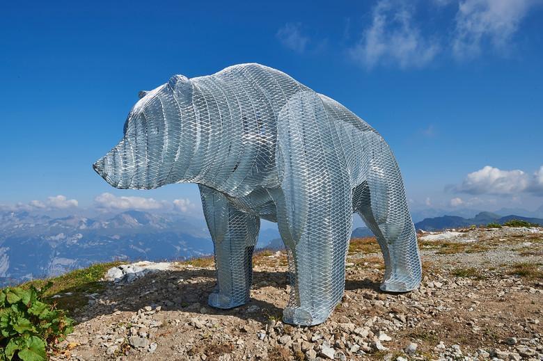 Bär Weisshorn