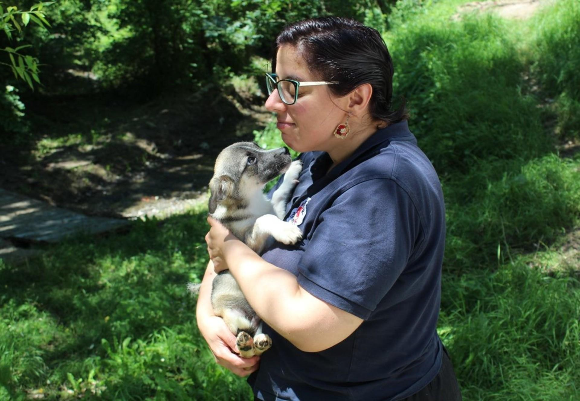 dog-woman-nature