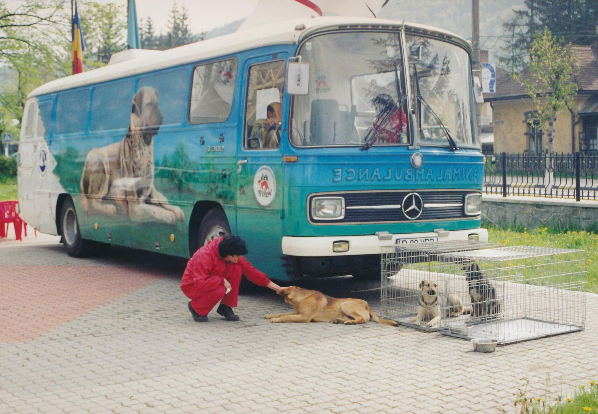 Die erste mobile VIER PFOTEN Streunerklinik im Einsatz in Rumänien (1999)