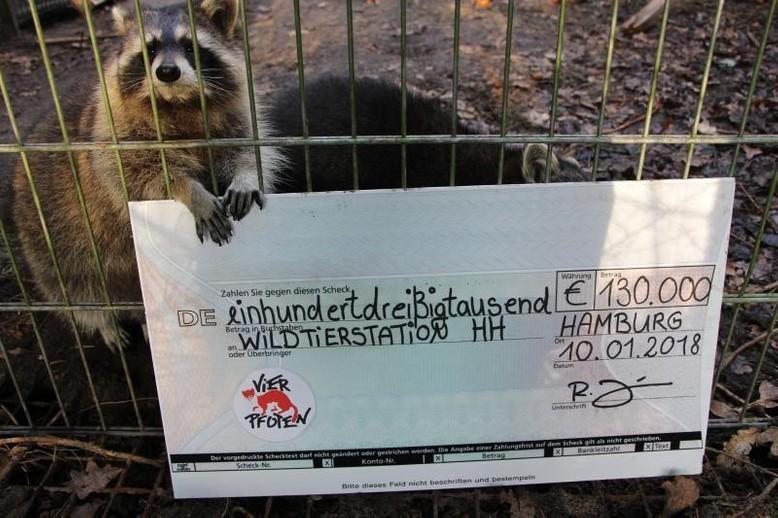 Waschbär hält Spendencheck für Wildtierstation Hamburg