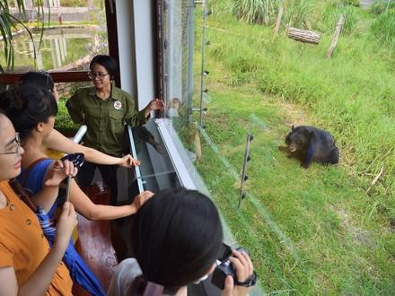 Visit BEAR SANCUTARY Ninh Binh
