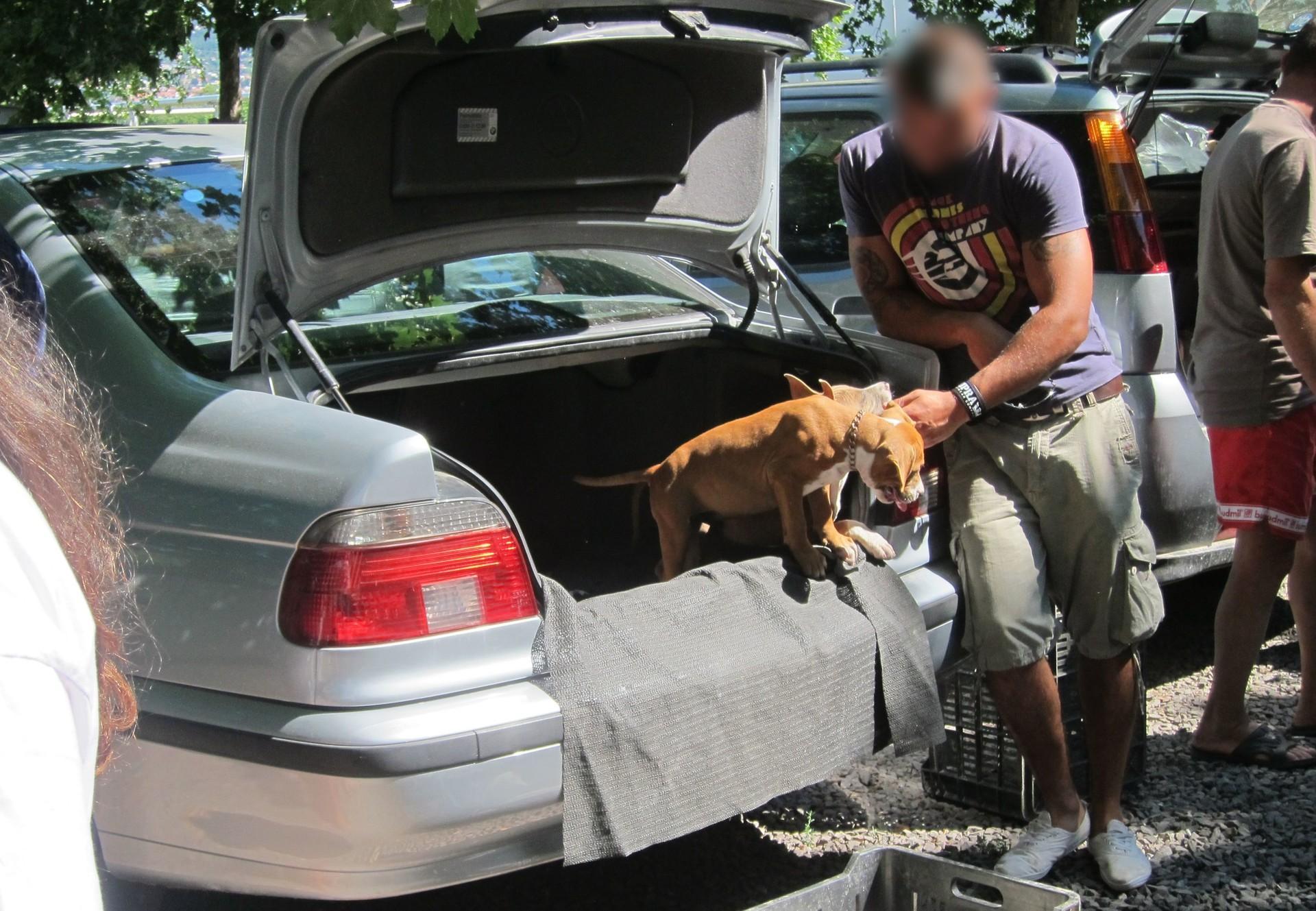 Bei Verkäufen auf Parkplätzen sollten die Alarmglocken schrillen.