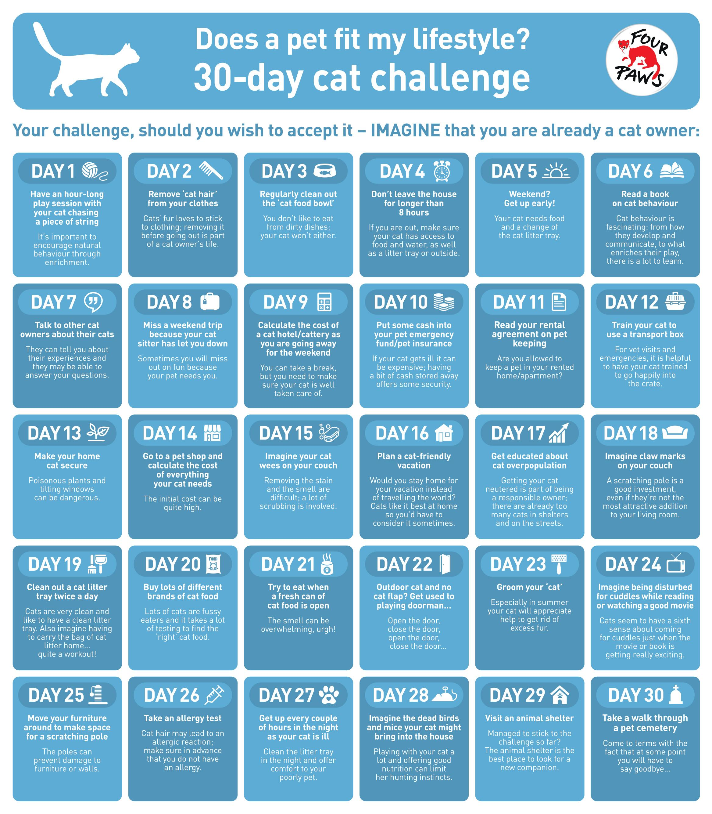 FOUR PAWS 30-day cat challenge