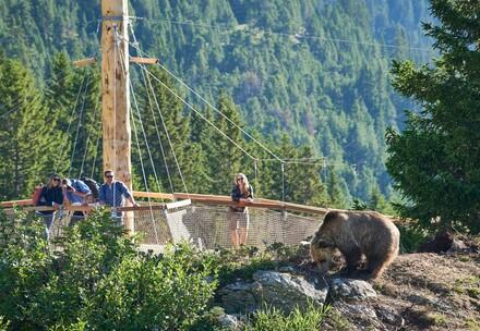 Abenteuerweg Arosa Bärenland