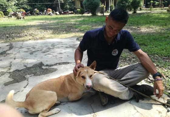 Teamlid VIER VOETERS aait opgevangen zwerfhond op Borneo