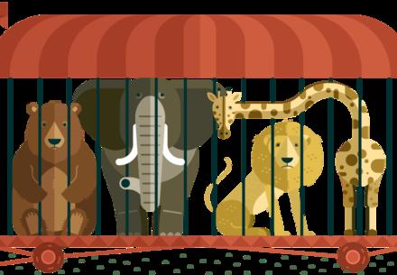 Pour dire adieu aux cirques avec des animaux sauvages au plus vite