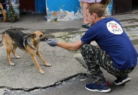 VIER PFOTEN Mitarbeiter unterwegs bei den Strassenhunden in der Ukraine