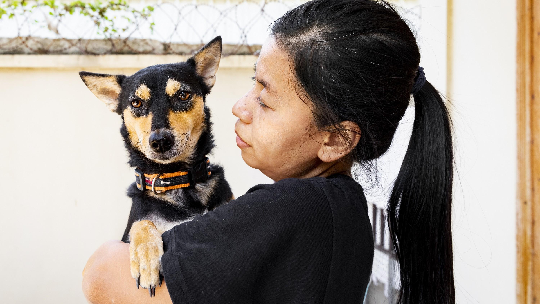 Lucy, sauvé du commerce de viande de chien