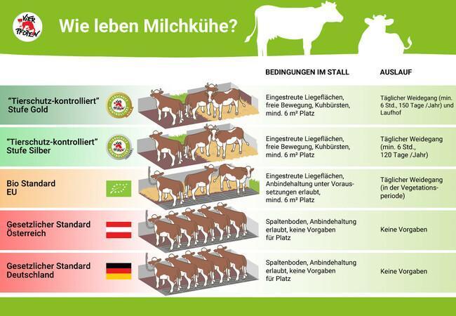 """Wie leben Milchkühe? – """"Tierschutz-kontrolliert"""""""