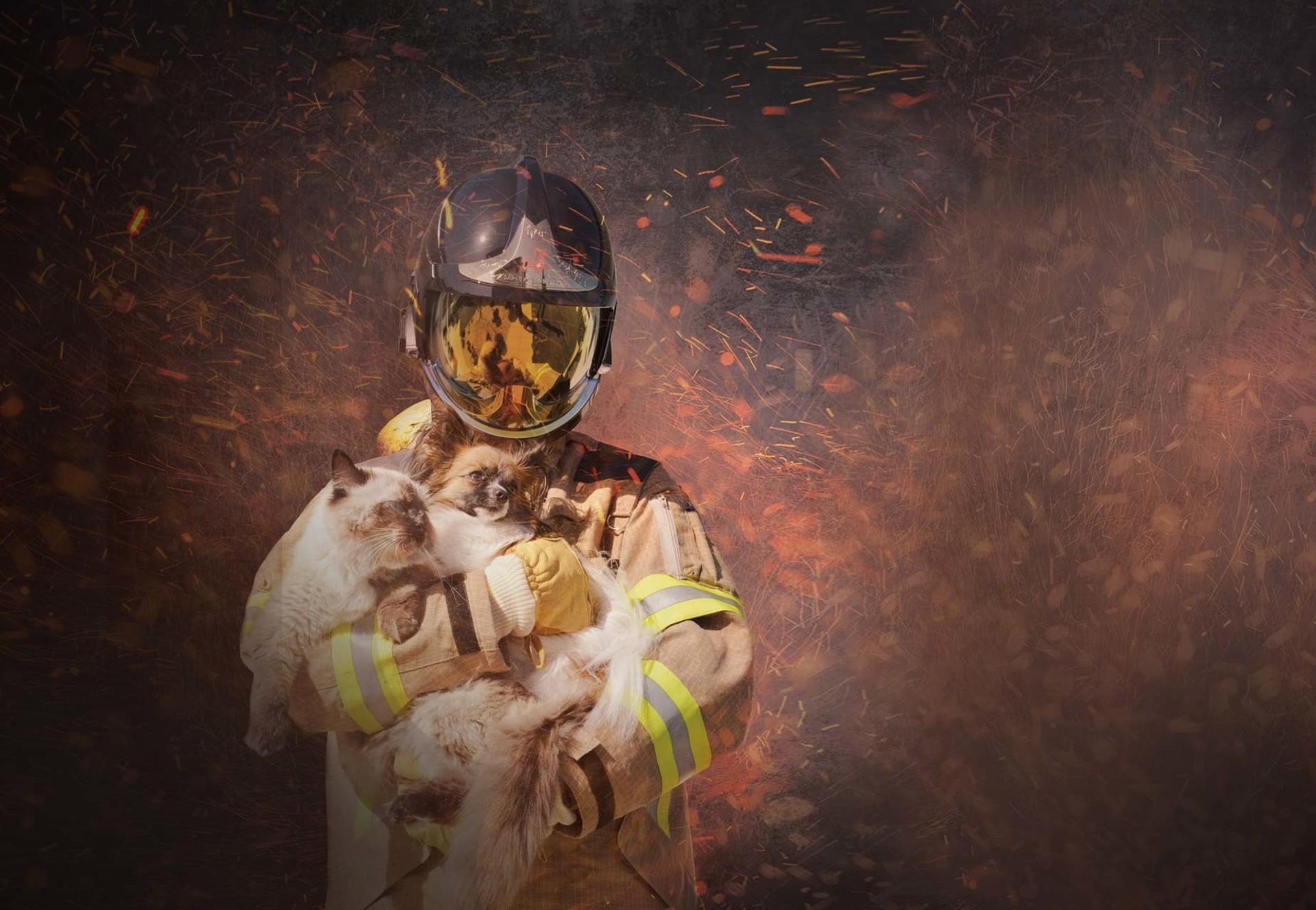 Feuerwehr retter Haustiere