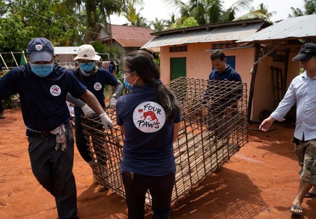Das VIER PFOTEN Team während der Rettungsaktion