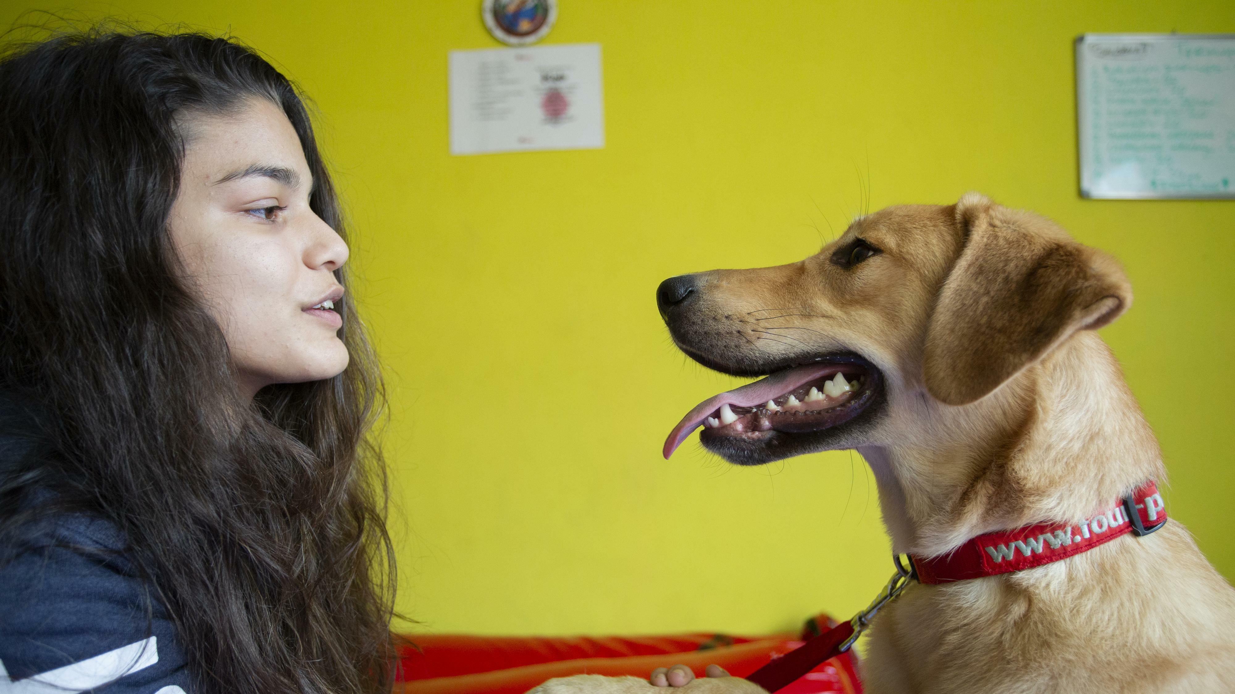 Дете и куче се гледат