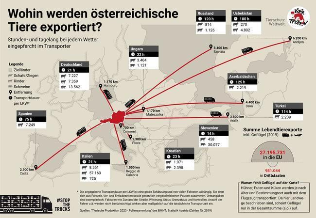 Wohin werden österreichische Tiere exportiert