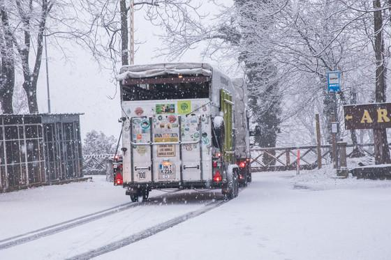Über Italien erreicht der Bären-Transporter die Schweiz