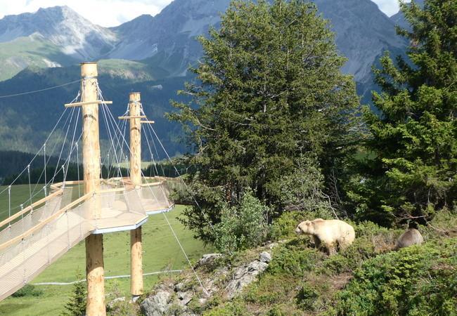 Arosa Bärenland Abenteuerweg