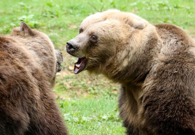 Zwischen Mutter und Tocher gibt es auch manchmal Streit.